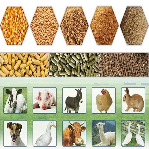 کود مرغی / کود حیوانی / پلت مرغ / کود ارگانیک و شیمیایی