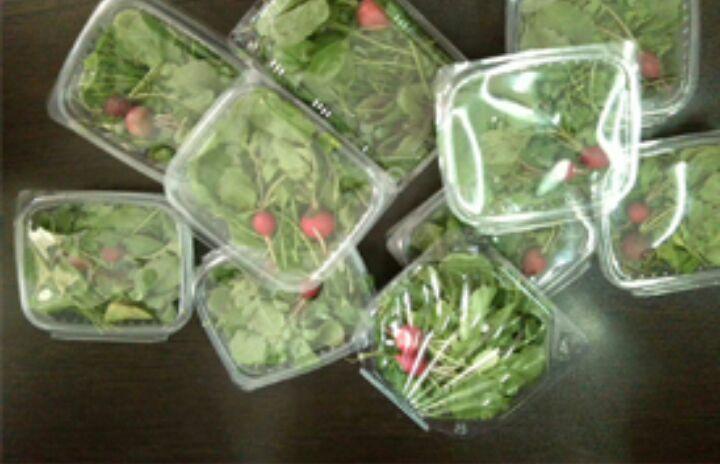 انواع سبزی خوردنی برای مهمانی های ماه مبارک رمضان همراه باپنیر